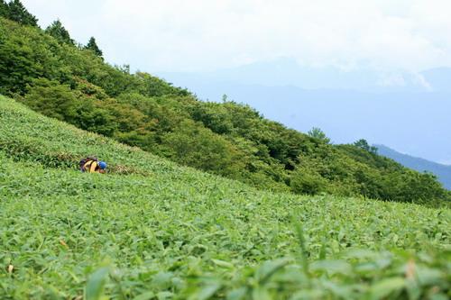 泉山160625134331