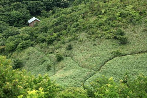 泉山160625133516