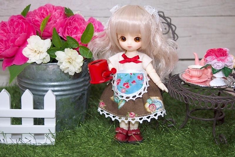 Brownie-nene0019.jpg