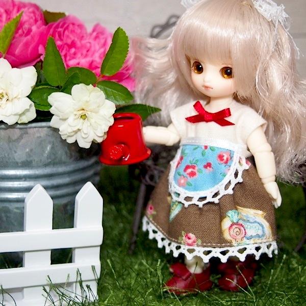 Brownie-nene0025.jpg