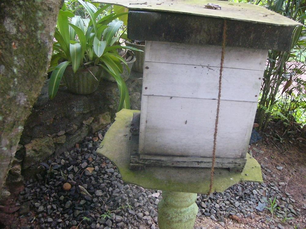 8ミツバチの家P1000360