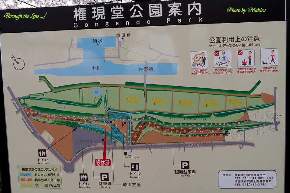 公園案内図L1
