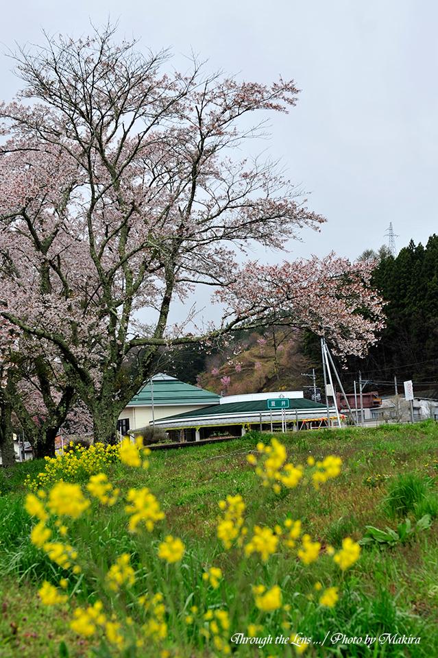 JR東日本常磐東線夏井駅2
