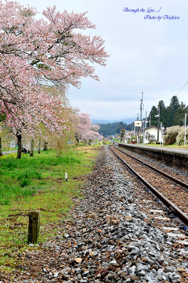 JR東日本常磐東線2