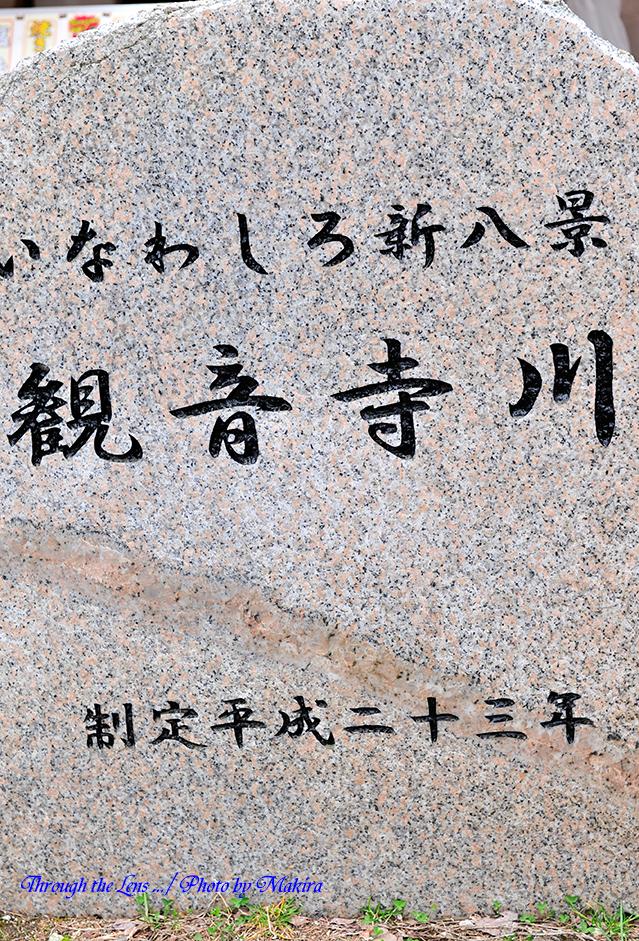 観音寺川桜並木碑1