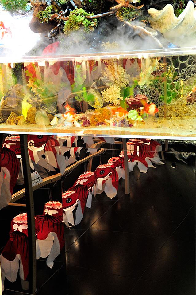 提灯のあかり-~山口県・柳井市「柳井金魚ちょうちん祭り」2