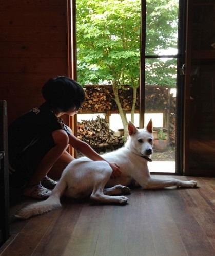 犬 くん2 (1)