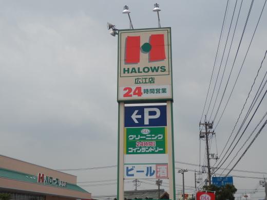 halowshiroe1608-1.jpg