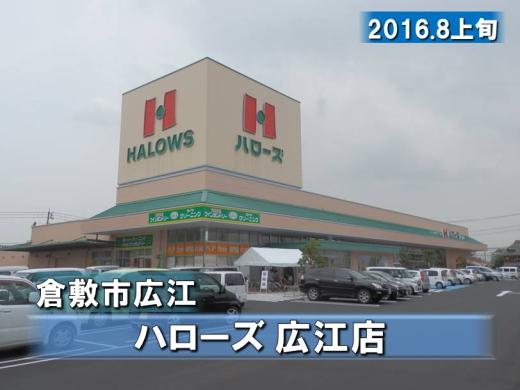 halowshiroe1608-2.jpg