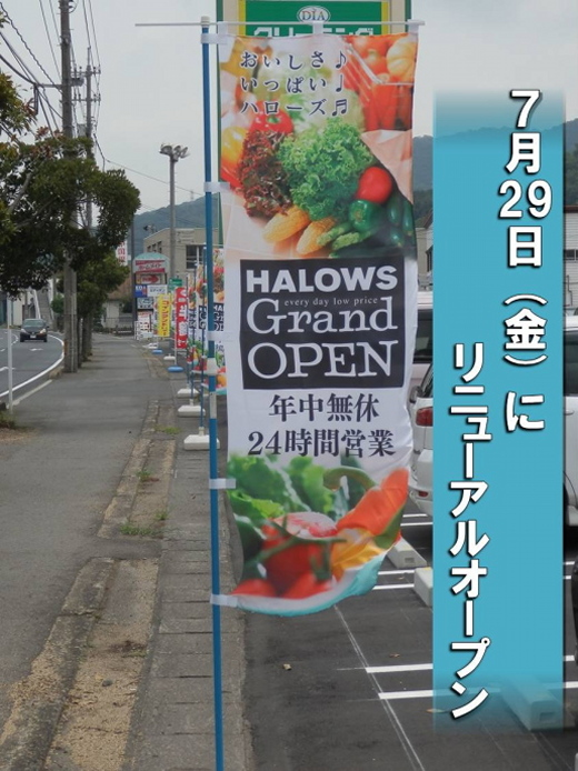 halowshiroe1608-4.jpg