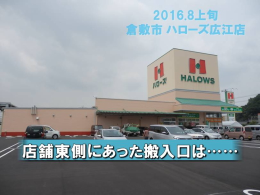 halowshiroe1608-6.jpg