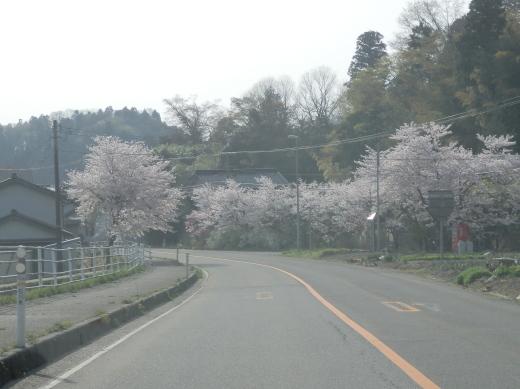 ishikawatsubatatown1604-1.jpg