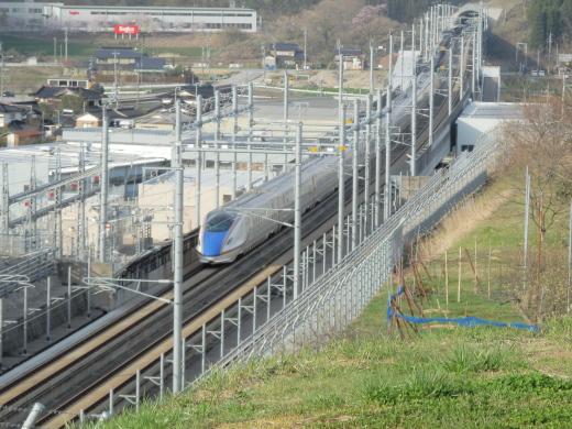 ishikawatsubatatown1604-10.jpg