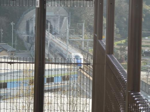 ishikawatsubatatown1604-12.jpg