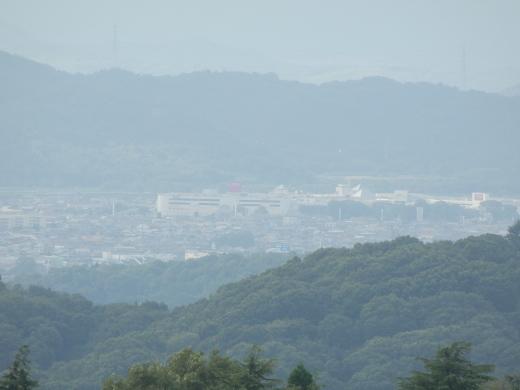 kurashikicitytanematsuyamapark1607-13.jpg
