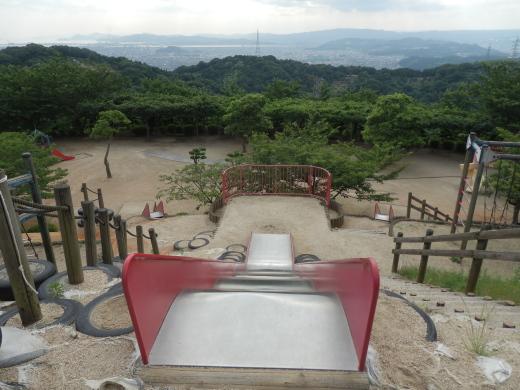 kurashikicitytanematsuyamapark1607-7.jpg