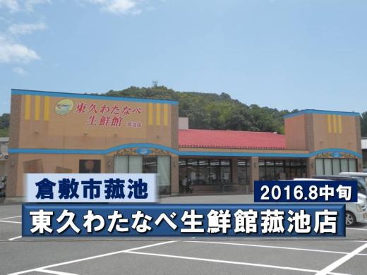 tokyuwatanabeseisenkankomoike1608-2.jpg