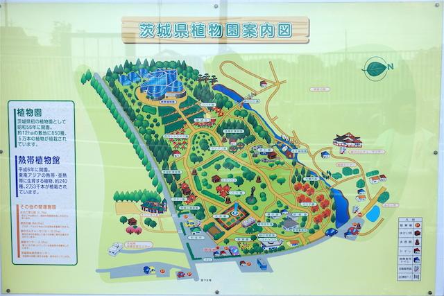0505植物園