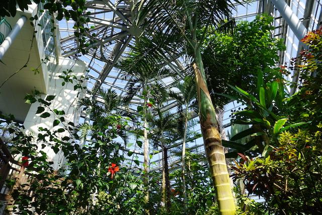 0505植物園7