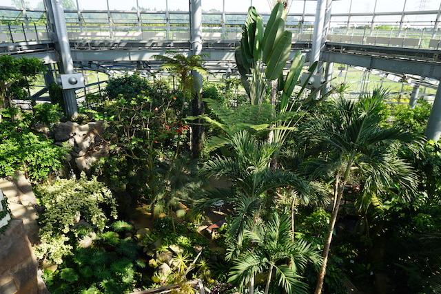 0505植物園9