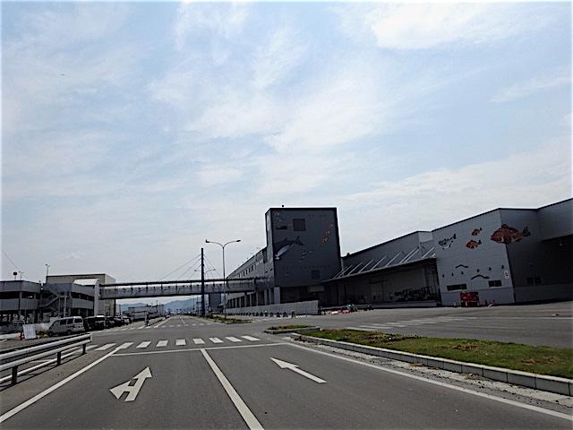 0605石巻港7