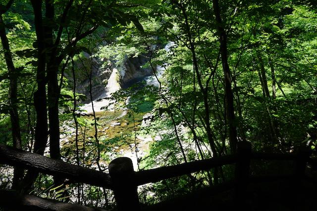 0611滝1