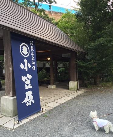 熊本旅 020