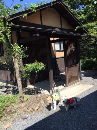 熊本旅 038
