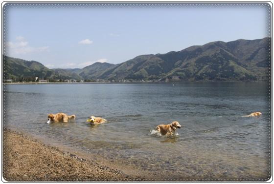 2016,4,24琵琶湖1