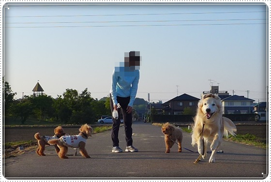 2016,5,19お散歩2