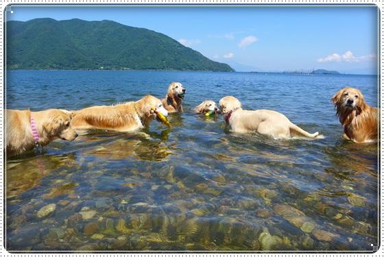 2016,6,10琵琶湖5