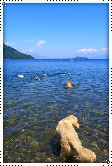 2016,6,12琵琶湖すずちゃん10