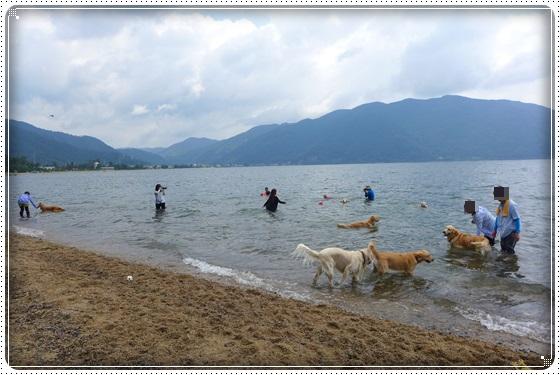 2016,6,27琵琶湖3