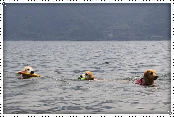 2016,6,29琵琶湖4