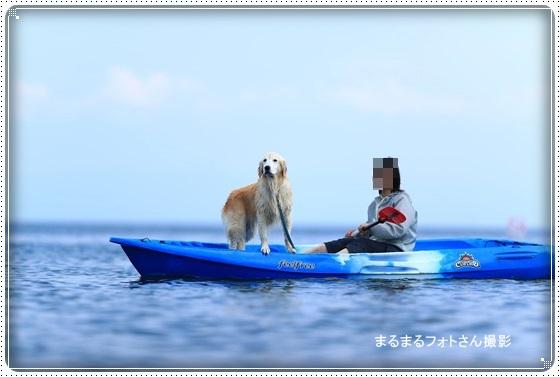 2016,6,29琵琶湖12