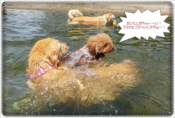 2016,7,13琵琶湖6