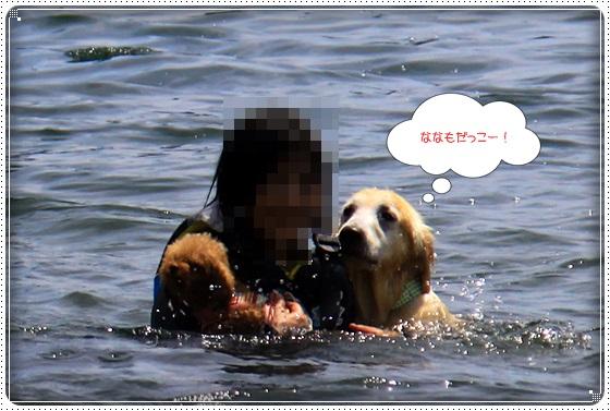 2016,7,13琵琶湖11