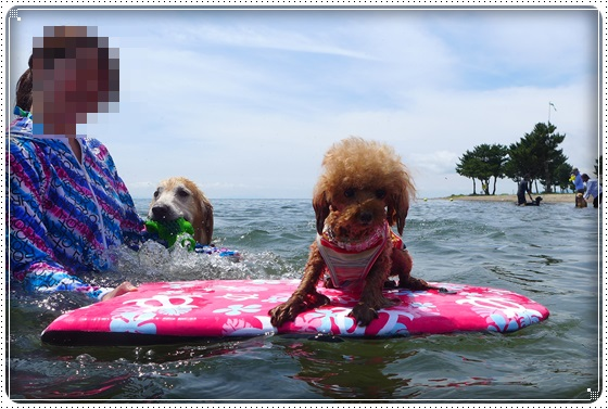 2016,7,13琵琶湖8