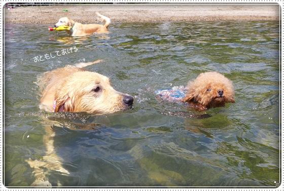 2016,7,13琵琶湖7