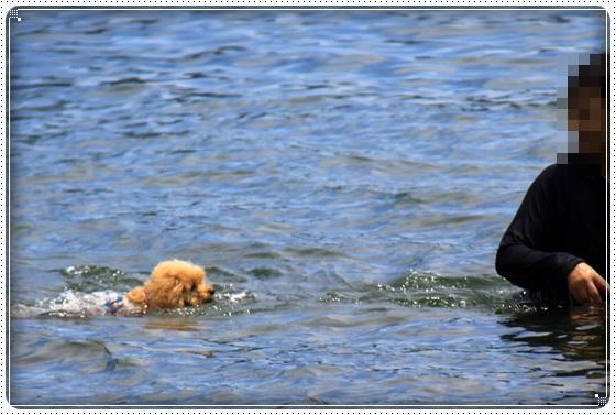 2016,7,13琵琶湖14