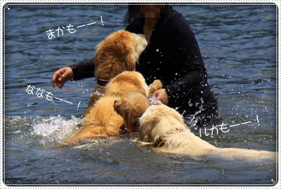 2016,7,13琵琶湖15