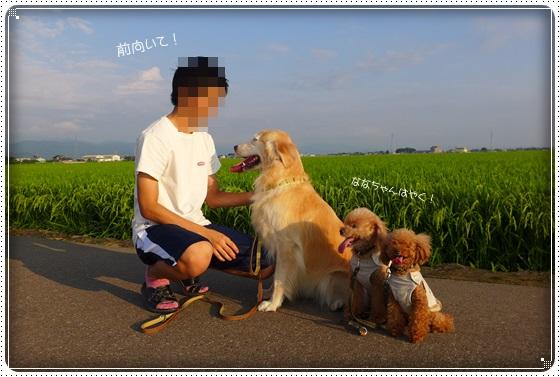 2016,8,4お散歩7