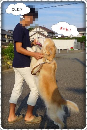 2016,9,25お散歩2