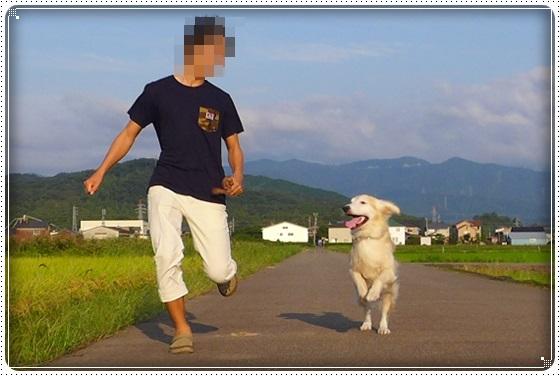2016,9,25お散歩9