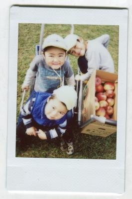 りんご3人組 (1)
