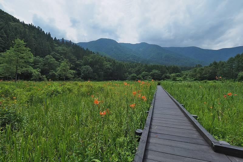kooniyuri_036-m.jpg