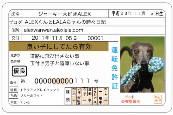 ALEX免許証_convert_20160603225953