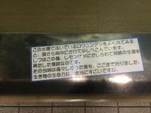 r-IMG_3376.jpg