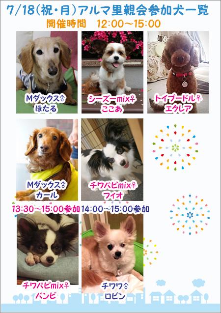 poster2_20160710161429559.jpg