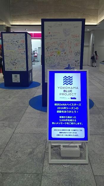 201610163.jpg